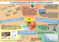 Développement durable : prévenir ou guérir ?