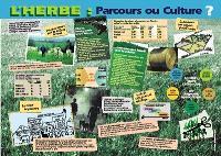 L'herbe, parcours ou culture ?