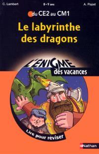 Le labyrinthe des dragons : lire pour réviser du CE2 au CM1, 8-9 ans