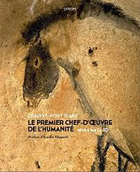 Chauvet-Pont d'Arc : le premier chef-d'oeuvre de l'humanité révélé par la 3D