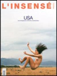 Insensé (L'). n° 6, USA : les photographes américains contemporains