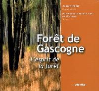 Forêt de Gascogne, l'esprit de la forêt : le plus grand massif forestier d'Europe