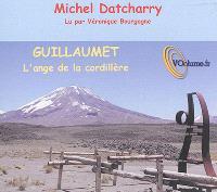 Guillaumet, l'ange de la cordillère