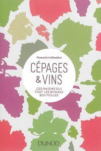 Cépages & vins : ces raisins qui font les bonnes bouteilles