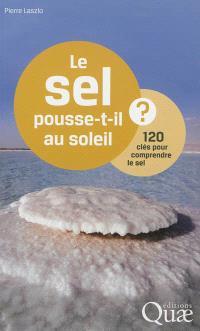 Le sel pousse-t-il au soleil ? : 120 clés pour comprendre le sel