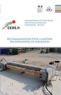 Comportement et évaluation des ouvrages spéciaux : fissuration, retrait : recommandations pour la maîtrise des phénomènes de fissuration