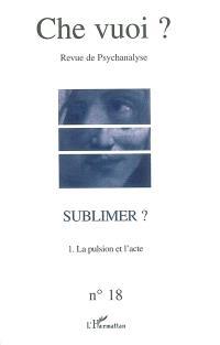 Che vuoi ? nouvelle série. n° 18, Sublimer ? : la pulsion et l'acte