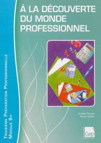A la découverte du monde professionnel : Troisième préparation professionnelle, module 6 h