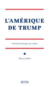 L'Amérique de Trump : portrait d'un pays en colère