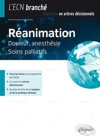 Réanimation, douleur, anesthésie, soins palliatifs