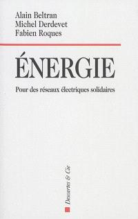 Energie : pour des réseaux électriques solidaires