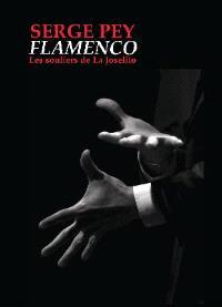 Flamenco : les souliers de La Joselito