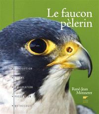 Le faucon pèlerin : description, moeurs, observation, protection, mythologie