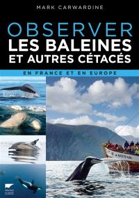 Observer les baleines et autres cétacés en France et en Europe