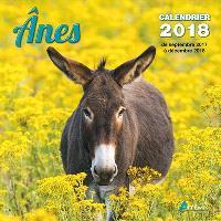 Anes : calendrier 2018 : de septembre 2017 à décembre 2018