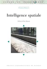 Intelligence spatiale
