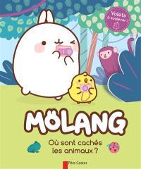 Mölang, Où sont cachés les animaux ?