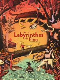 Les labyrinthes de Finn : un livre-jeu