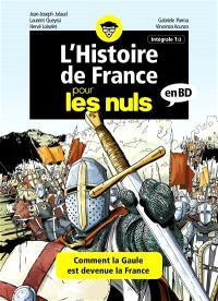 L'histoire de France pour les nuls en BD : intégrale. Volume 1, La passionante aventure de la Gaule qui devient la France !