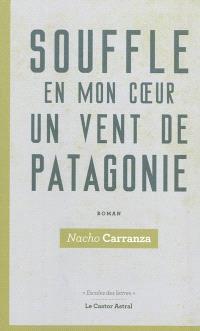 Souffle en mon coeur un vent de Patagonie : un curriculum vitae imaginaire