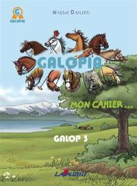 Galopia : mon cahier..., Galop 3