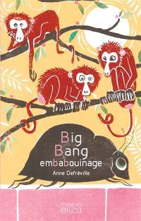 Big bang embabouinage