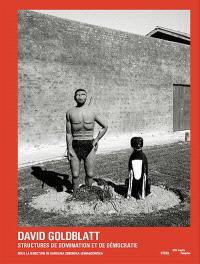 David Goldblatt, structures de domination et de démocratie