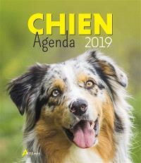 Chien : agenda 2019