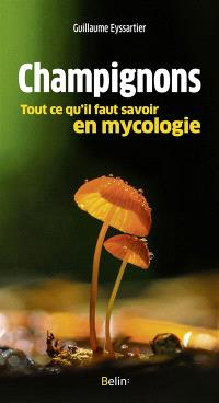 Champignons : tout ce qu'il faut savoir en mycologie