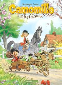 Camomille et les chevaux. Volume 2, Sacré Pompon