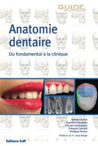 Anatomie dentaire : du fondamental à la clinique