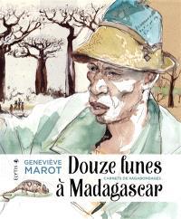 Douze lunes à Madagascar : carnets de vagabondages