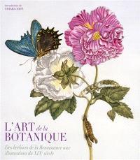 L'art de la botanique : des herbiers de la Renaissance aux illustrations du XIXe siècle