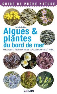 Algues & plantes du bord de mer : observer et reconnaître 50 espèces de notre littoral