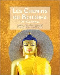 Les chemins du Bouddha : un pèlerinage