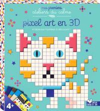 Pixel art en 3D : 4 tableaux mystères à découvrir !