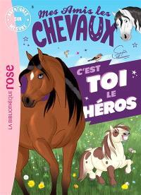 Mes amis les chevaux : c'est toi le héros