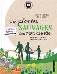 Des plantes sauvages dans mon assiette ! : identifier, cueillir & cuisiner la nature : 20 plantes sauvages comestibles