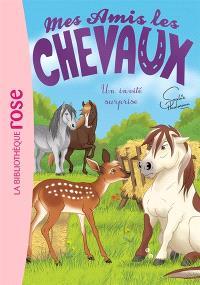 Mes amis les chevaux. Volume 28, Un invité surprise