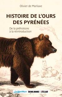 Histoire de l'ours des Pyrénées : de la préhistoire à la réintroduction