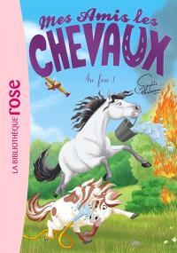 Mes amis les chevaux. Volume 30, Au feu !