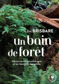 Un bain de forêt : découvrez la sylvothérapie et les bienfaits des arbres