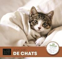 Amour de chats : livre agenda 2021