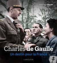 Charles de Gaulle : un destin pour la France