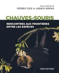 Chauves-souris : rencontres aux frontières entre les espèces