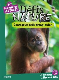 Courageux petit orang-outan