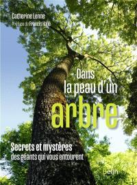 Dans la peau d'un arbre : secrets et mystères des géants qui vous entourent