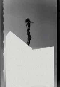 MARTEN LANGE GHOST WITNESS /ANGLAIS
