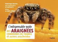 L'indispensable guide des araignées communes de France et autres arachnides