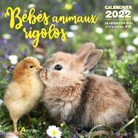 Bébés animaux rigolos : calendrier 2022 : de septembre 2021 à décembre 2022